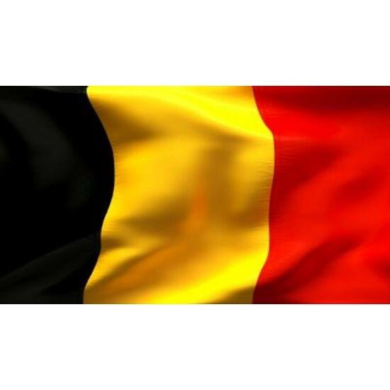 Belga zászló